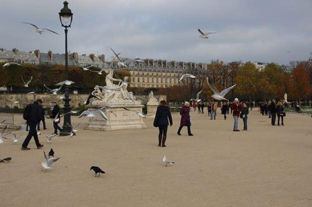 Jardin des Tuileries, uma praça simplesmente linda e simples em Paris